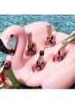 Colorize Deniz & Havuz Aksesuarları Pembe